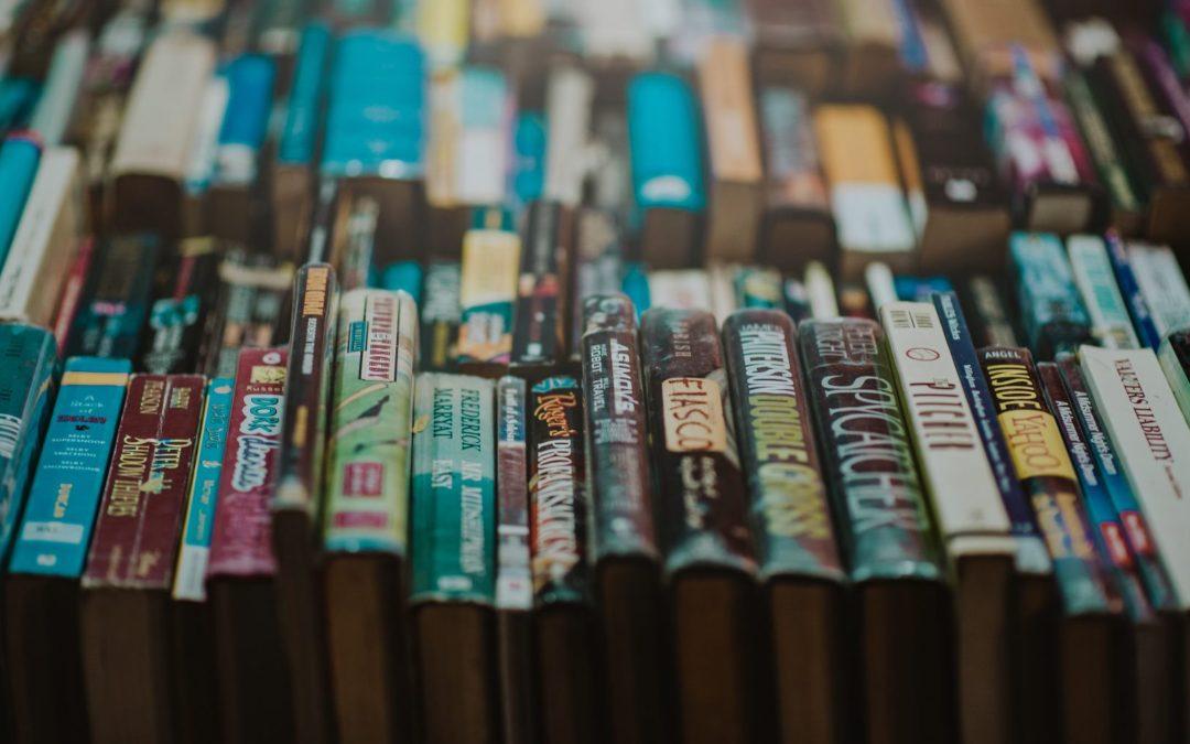 [Iz programa] Književna sekcija